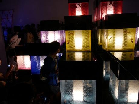 アートアクアリウム 21世紀美術館