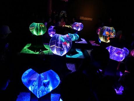 アートアクアリウム 21世紀美術館1
