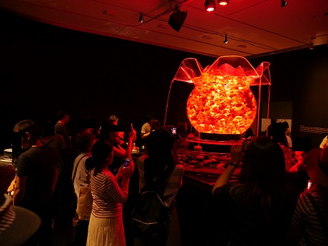 アートアクアリウム 21世紀美術館 花魁