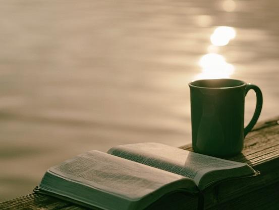 Kindle Paperwhiteで読書好きに